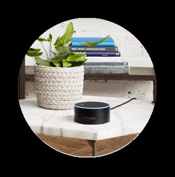 DISH Hands Free TV - Control Your TV with Amazon Alexa - West Plains, Missouri - Miller Satellite Center - DISH Authorized Retailer